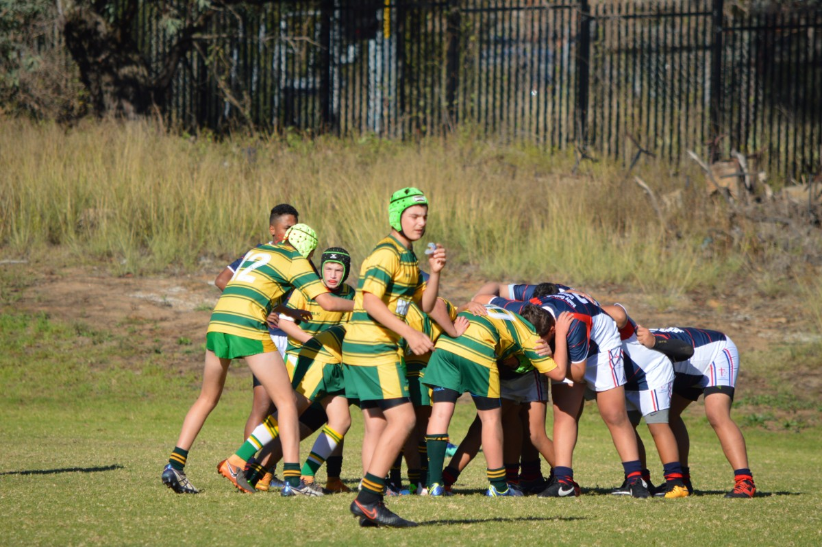 MCS Rugby 18